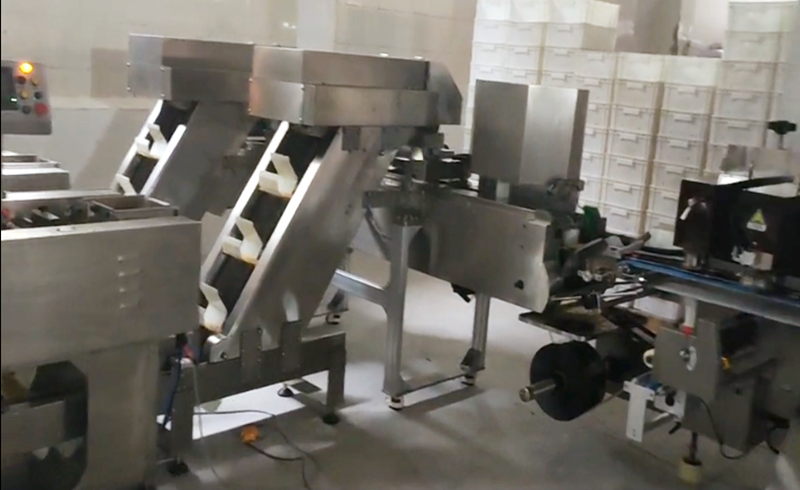 One drag two pasta auto packing line
